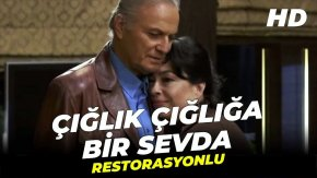 Ciglik Cigliga Bir Sevda English Subtitles