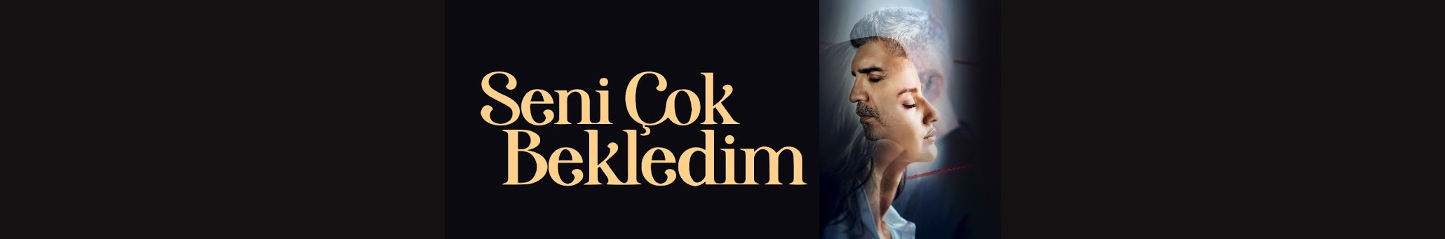 Seni Cok Bekledim Season 1 English subtitles | I Waited a Lot For You